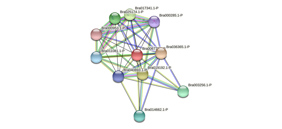 Bra006778 protein (Brassica rapa) - STRING interaction network