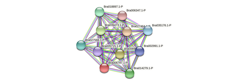 Bra006787 protein (Brassica rapa) - STRING interaction network