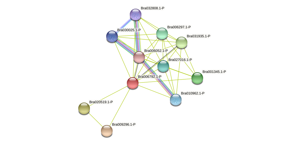 Bra006792 protein (Brassica rapa) - STRING interaction network