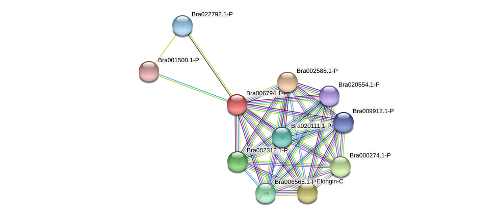 Bra006794 protein (Brassica rapa) - STRING interaction network