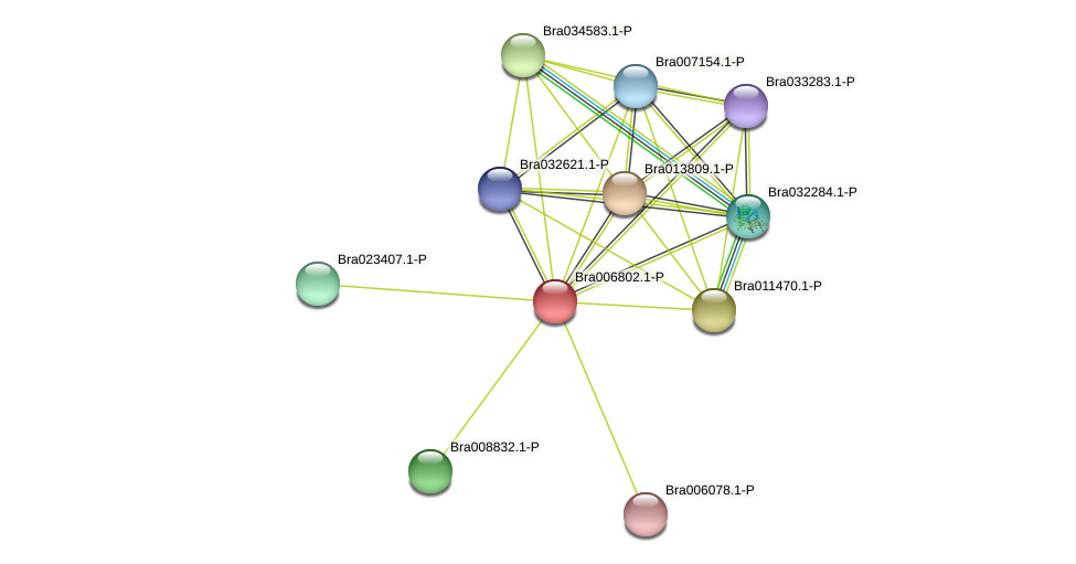 Bra006802 protein (Brassica rapa) - STRING interaction network