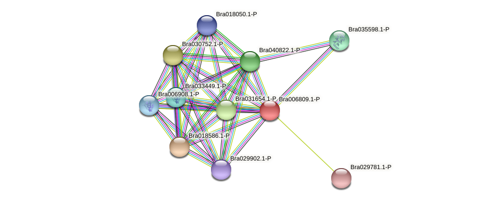 Bra006809 protein (Brassica rapa) - STRING interaction network