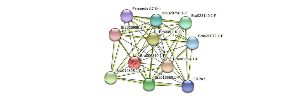 Bra006810 protein (Brassica rapa) - STRING interaction network