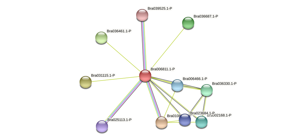 Bra006811 protein (Brassica rapa) - STRING interaction network