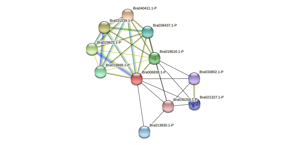 Bra006838 protein (Brassica rapa) - STRING interaction network