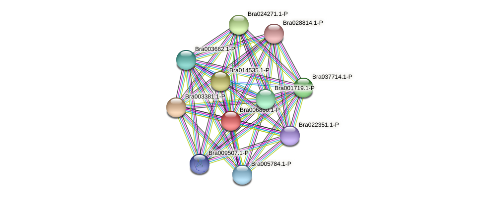 Bra006860 protein (Brassica rapa) - STRING interaction network