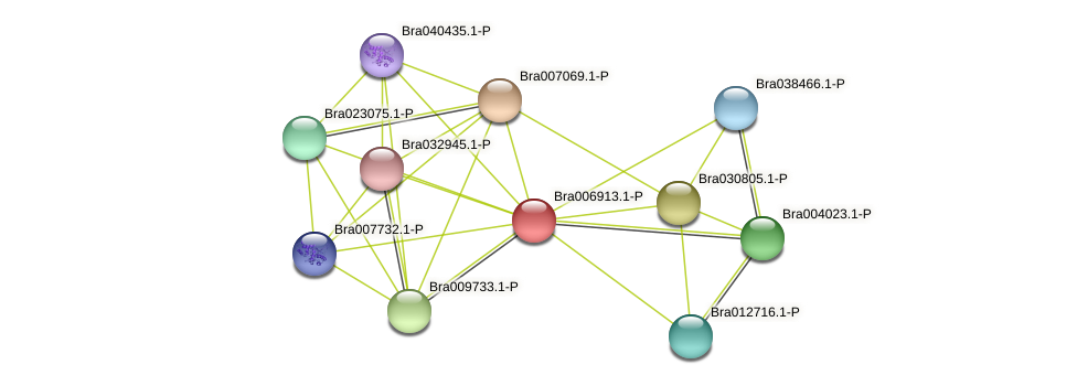 Bra006913 protein (Brassica rapa) - STRING interaction network
