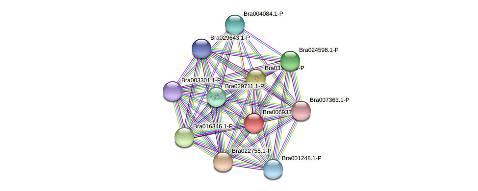 Bra006933 protein (Brassica rapa) - STRING interaction network