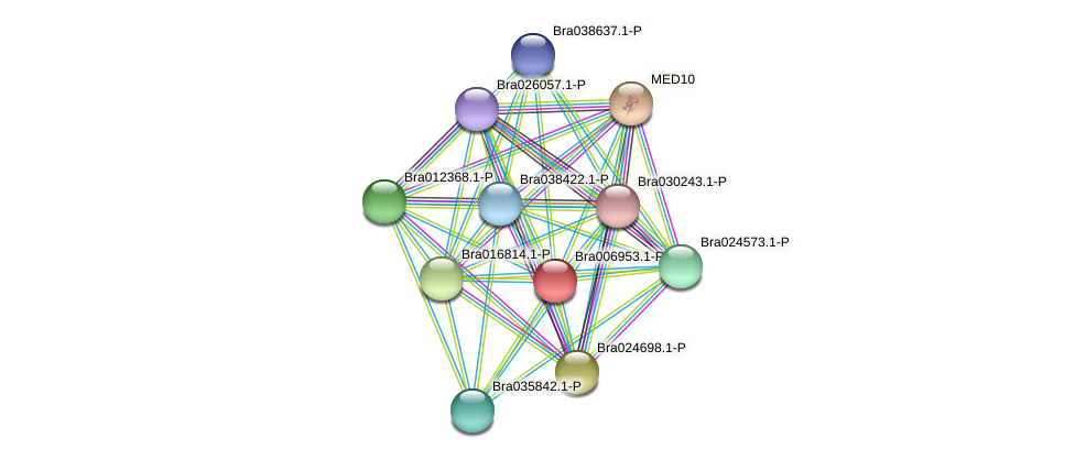 Bra006953 protein (Brassica rapa) - STRING interaction network