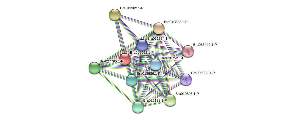Bra006962 protein (Brassica rapa) - STRING interaction network