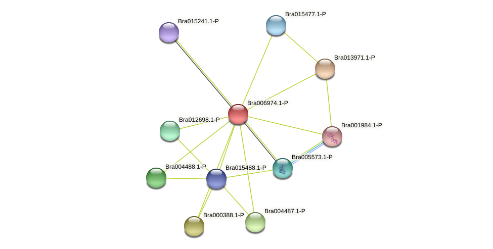 Bra006974 protein (Brassica rapa) - STRING interaction network