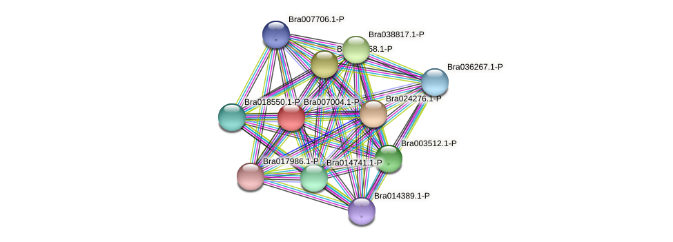 Bra007004 protein (Brassica rapa) - STRING interaction network