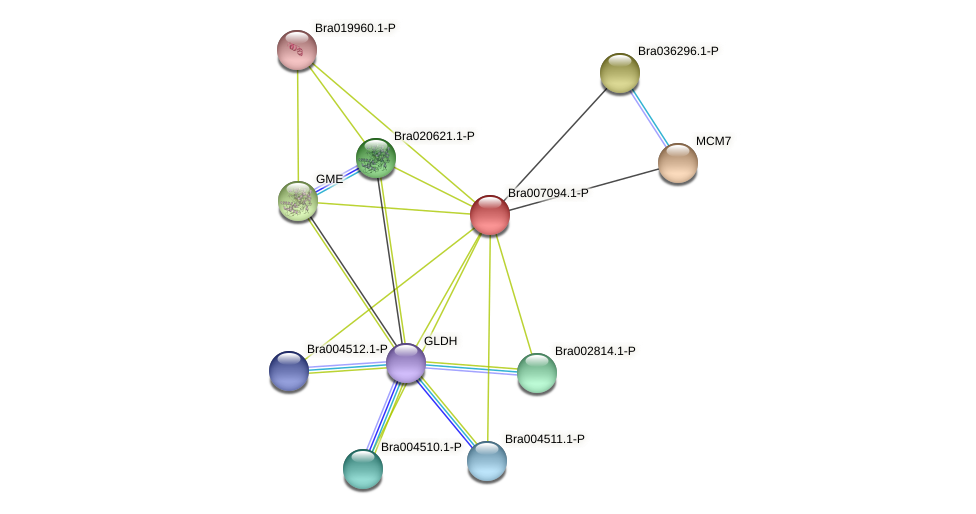 Bra007094 protein (Brassica rapa) - STRING interaction network