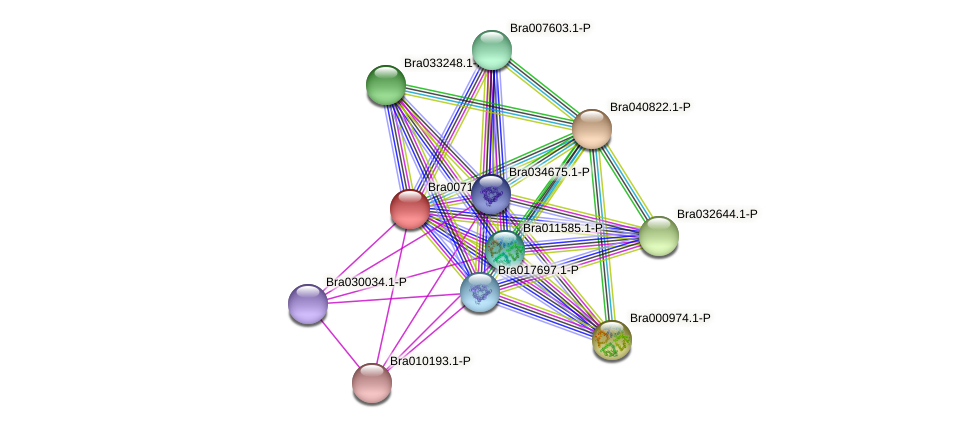 Bra007100 protein (Brassica rapa) - STRING interaction network