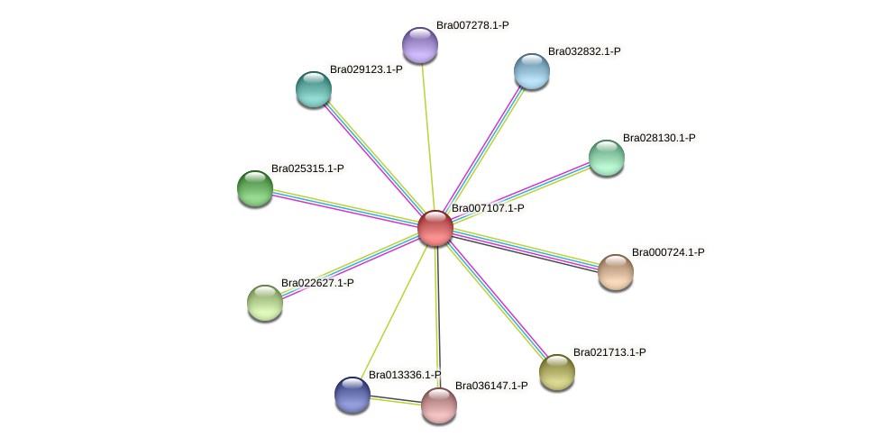 Bra007107 protein (Brassica rapa) - STRING interaction network