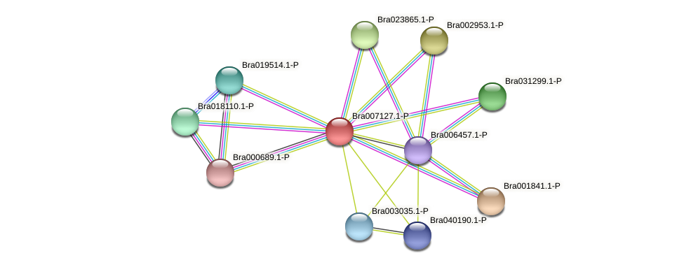 Bra007127 protein (Brassica rapa) - STRING interaction network