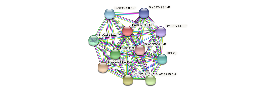 Bra007188 protein (Brassica rapa) - STRING interaction network