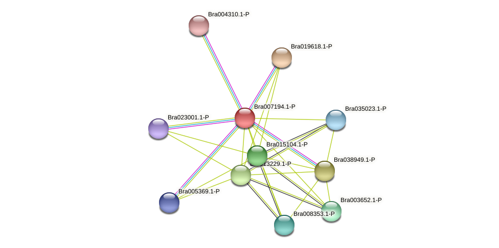 Bra007194 protein (Brassica rapa) - STRING interaction network