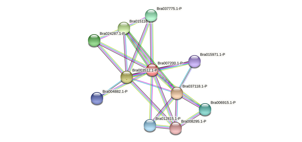 Bra007200 protein (Brassica rapa) - STRING interaction network