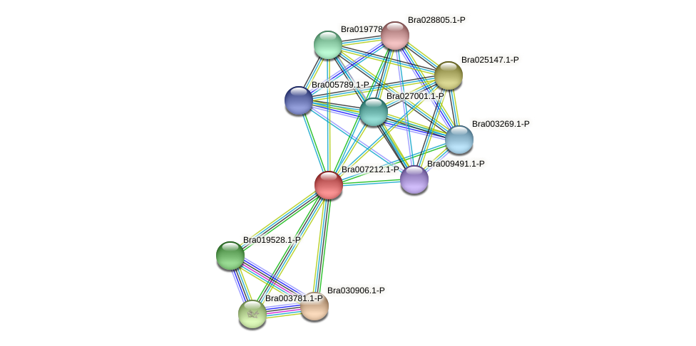 Bra007212 protein (Brassica rapa) - STRING interaction network