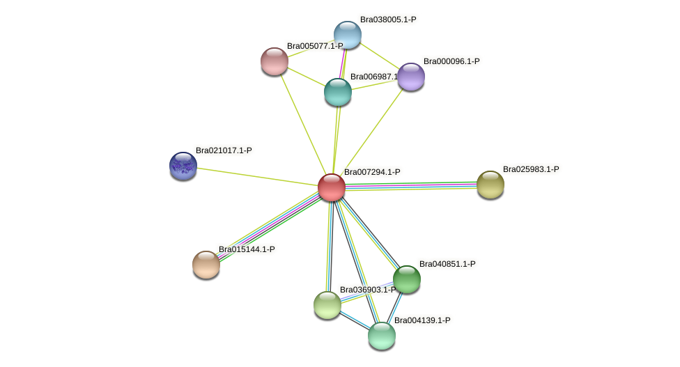 Bra007294 protein (Brassica rapa) - STRING interaction network