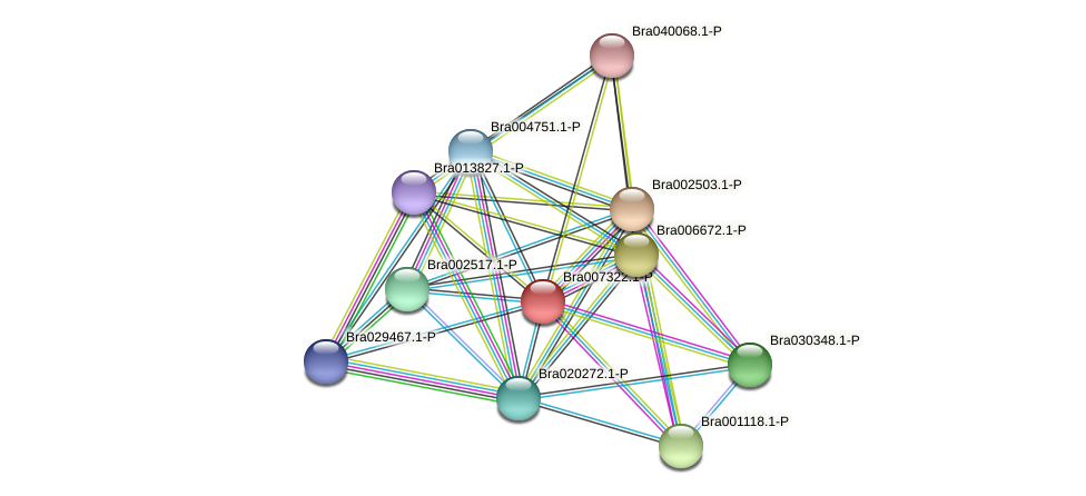 Bra007322 protein (Brassica rapa) - STRING interaction network