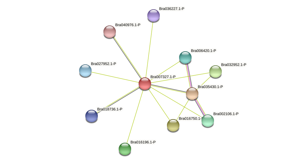 Bra007327 protein (Brassica rapa) - STRING interaction network