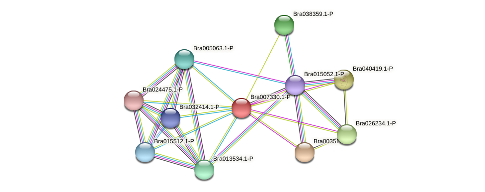 Bra007330 protein (Brassica rapa) - STRING interaction network