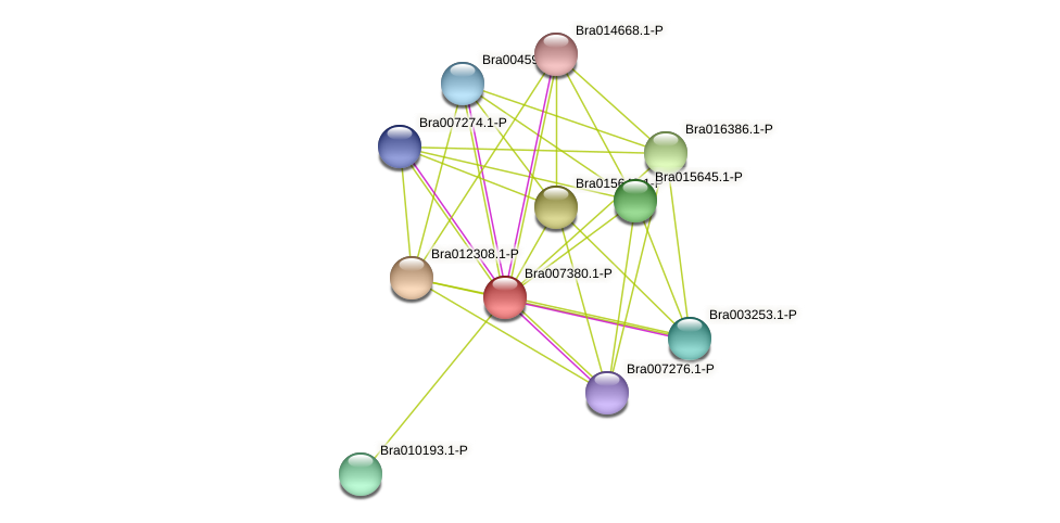 Bra007380 protein (Brassica rapa) - STRING interaction network