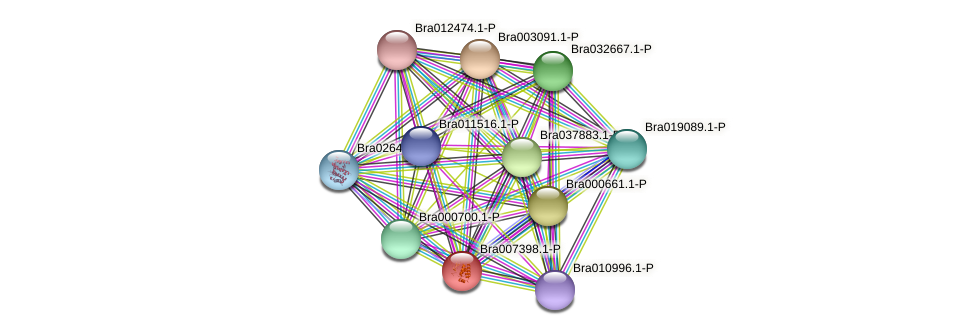 Bra007398.1-P protein (Brassica rapa) - STRING interaction network