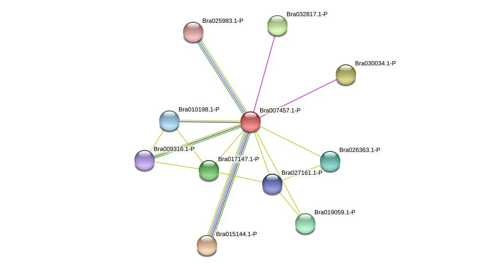 Bra007457 protein (Brassica rapa) - STRING interaction network