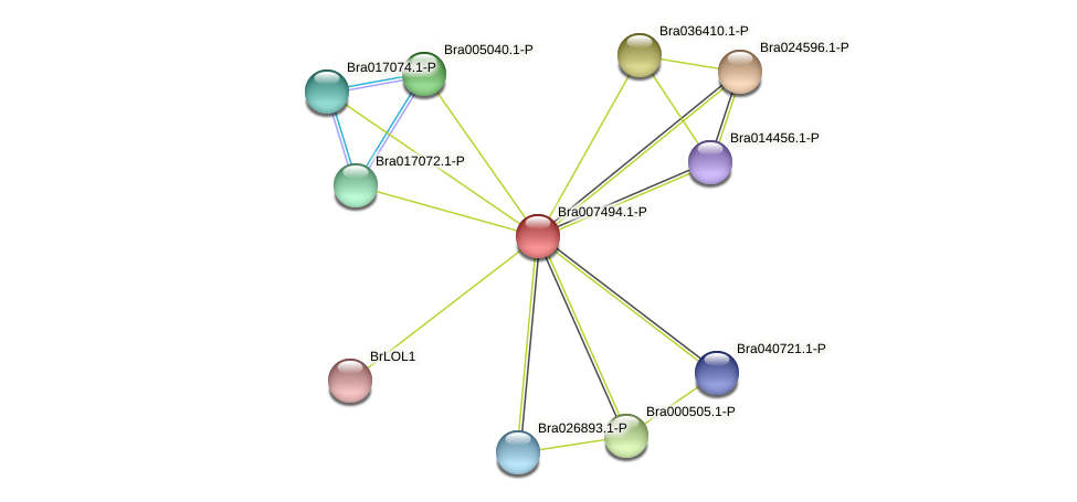 Bra007494 protein (Brassica rapa) - STRING interaction network