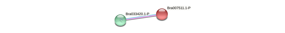 Bra007511 protein (Brassica rapa) - STRING interaction network