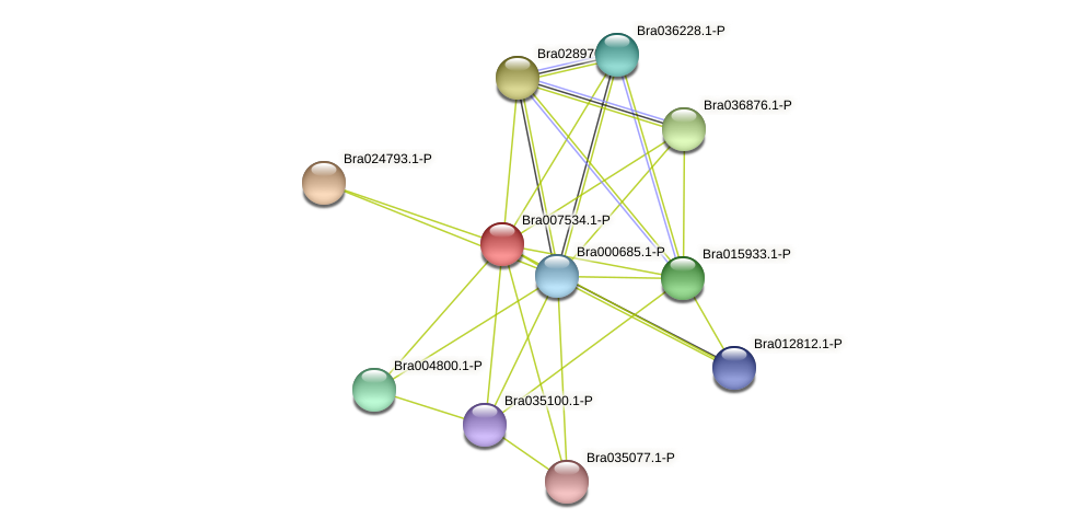 Bra007534 protein (Brassica rapa) - STRING interaction network