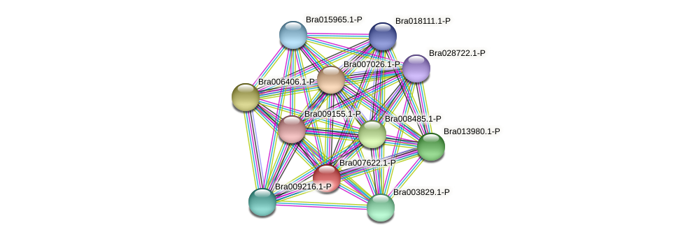 Bra007622 protein (Brassica rapa) - STRING interaction network