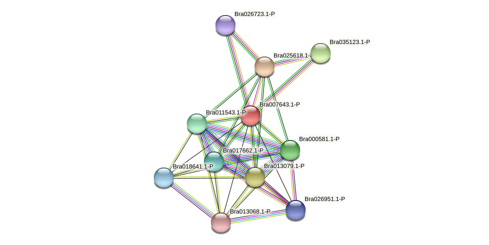 Bra007643 protein (Brassica rapa) - STRING interaction network