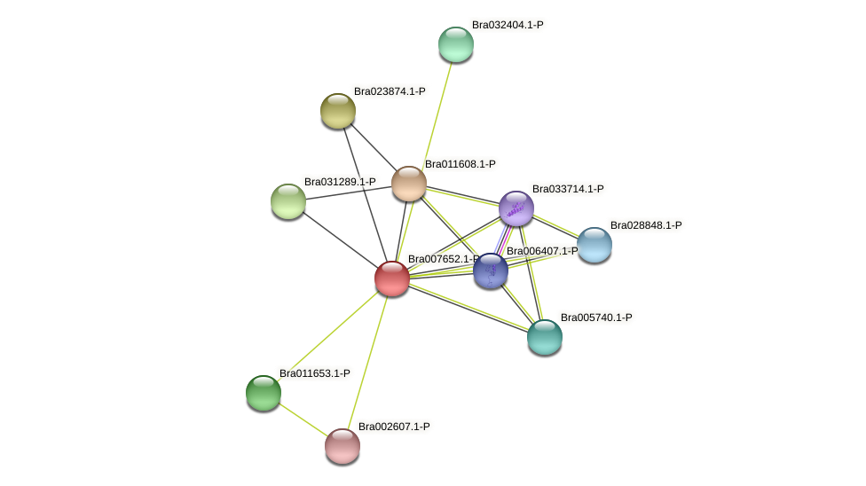 Bra007652 protein (Brassica rapa) - STRING interaction network