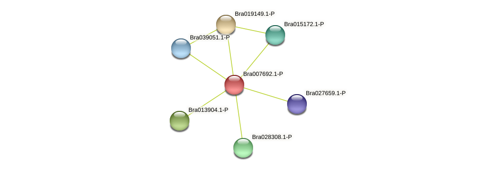 Bra007692 protein (Brassica rapa) - STRING interaction network