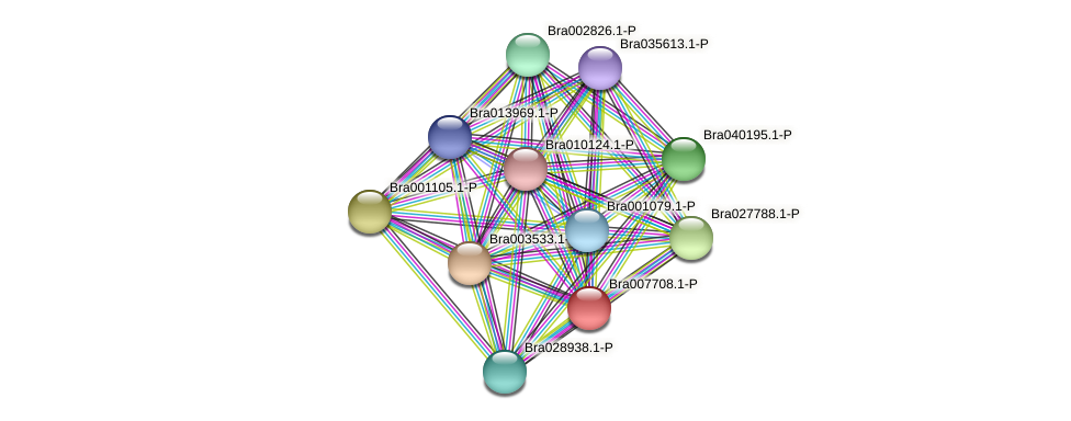 Bra007708 protein (Brassica rapa) - STRING interaction network
