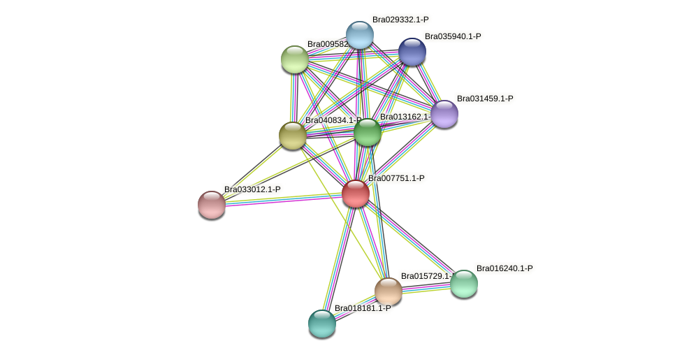 Bra007751 protein (Brassica rapa) - STRING interaction network