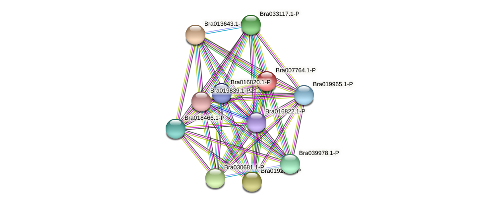 Bra007764 protein (Brassica rapa) - STRING interaction network