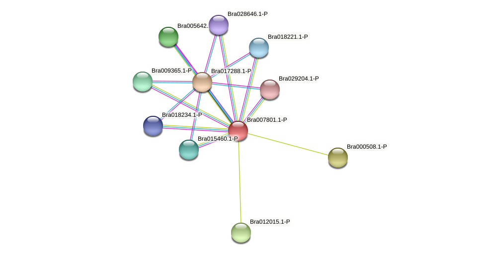 Bra007801 protein (Brassica rapa) - STRING interaction network