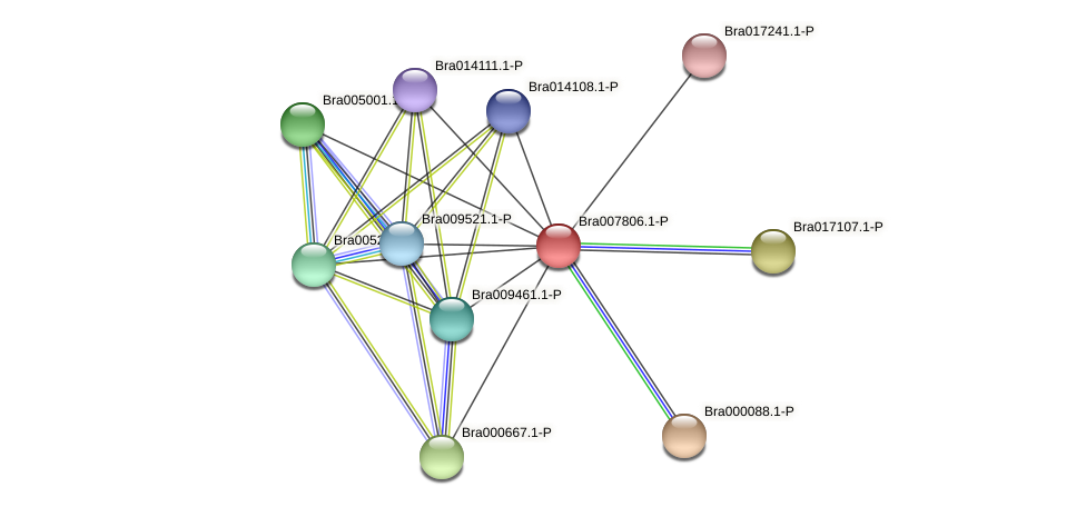 Bra007806 protein (Brassica rapa) - STRING interaction network