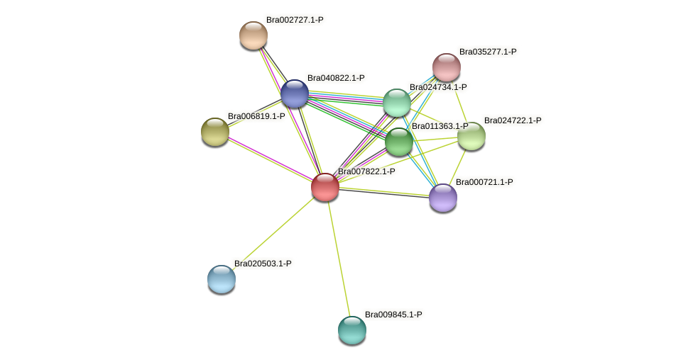 Bra007822 protein (Brassica rapa) - STRING interaction network