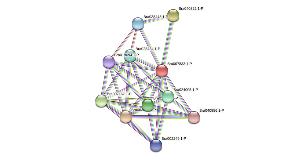 ARF1 protein (Brassica rapa) - STRING interaction network