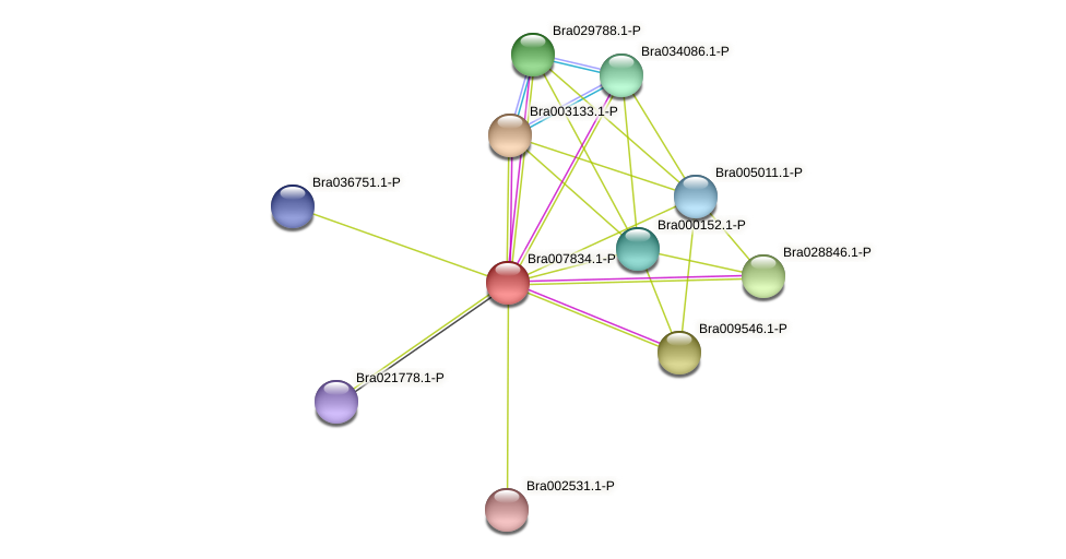 Bra007834 protein (Brassica rapa) - STRING interaction network