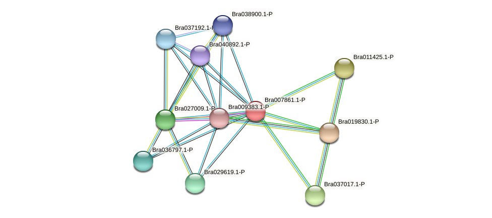 Bra007861 protein (Brassica rapa) - STRING interaction network