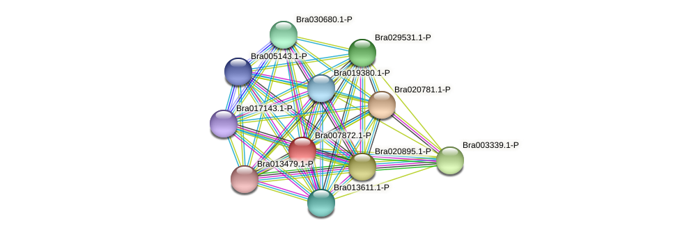Bra007872 protein (Brassica rapa) - STRING interaction network