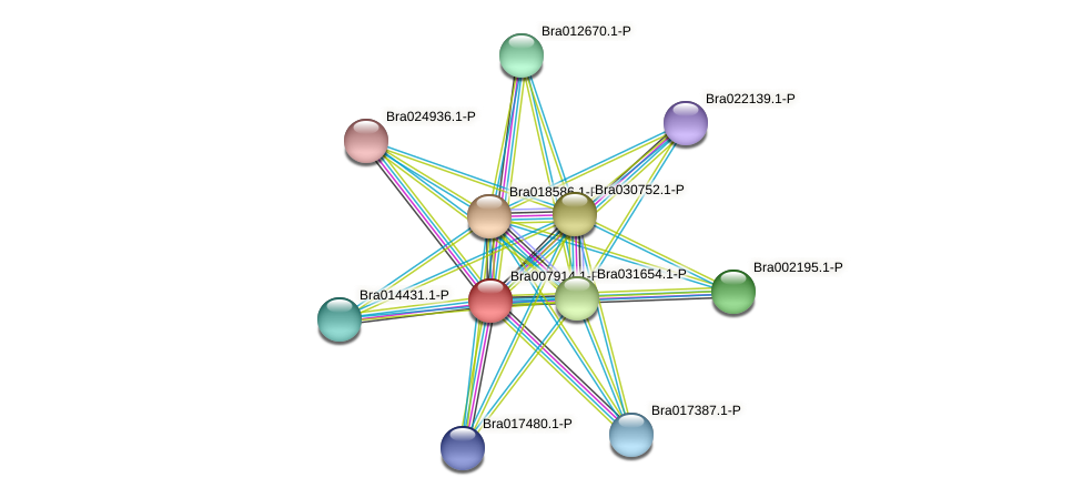 Bra007914 protein (Brassica rapa) - STRING interaction network