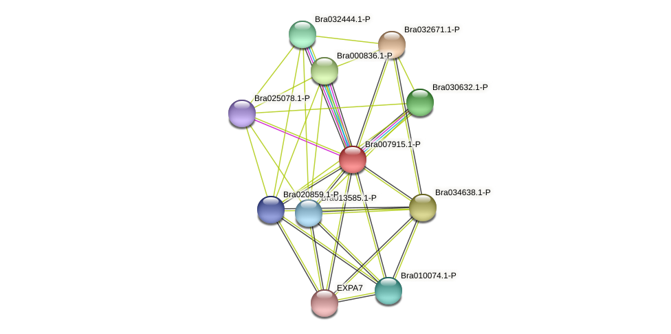 Bra007915 protein (Brassica rapa) - STRING interaction network